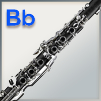 Polstersatz für B-Klarinette