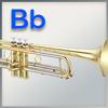 Handschutz für Trompete