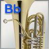Handschutz für Tuba
