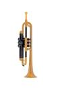 pTrumpet Bb-Trumpet ABS-Kunststoff in verschiedenen Farben