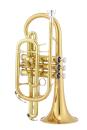 Jupiter JCR700RQ Bb Kornett Goldmessing, lackiert