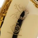 Selmer SeleS Axos Alto Saxophone