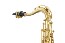 ANTIGUA B-Tenor-Saxophon TS2155LQ-GH VOSI Serie, Messing...
