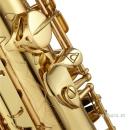 ANTIGUA Eb-Alto-Saxophon AS4348CU-CR-GH MODELL 25...