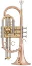 Arnolds& Sons®  Kornett –Terra Goldmessing...