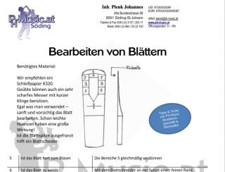 Pflegeanleitung Reinigungsanleitung Anwendungsanleitung Instrument